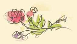 kwiatek-ecru