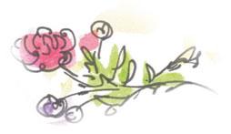 kwiatek-white